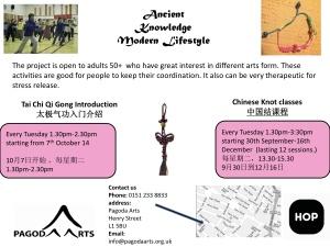 chinese knot and taichi